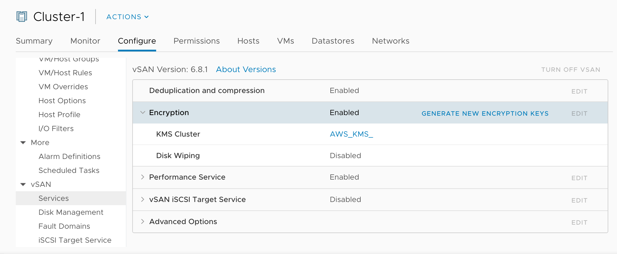 Encryption on VMware Cloud on AWS: at rest and in-transit